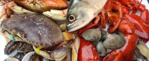 oz-seafood